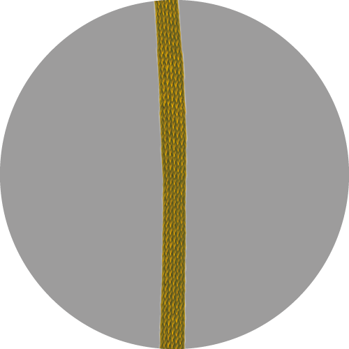 Leeslint-D-228-GOUD-1