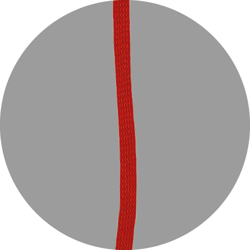 Leeslint-D-463-ROOD-1