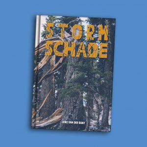 Stormschade-boek over epilepsie